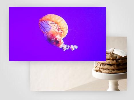 digital signage images videos